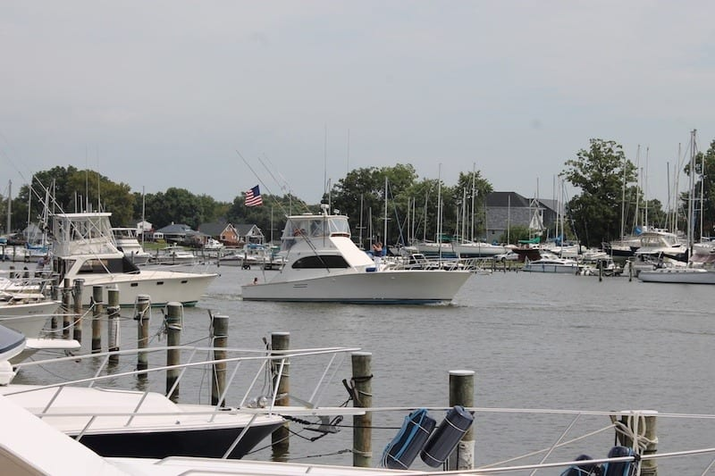 WW-Day-on-the-Bay-2018-094